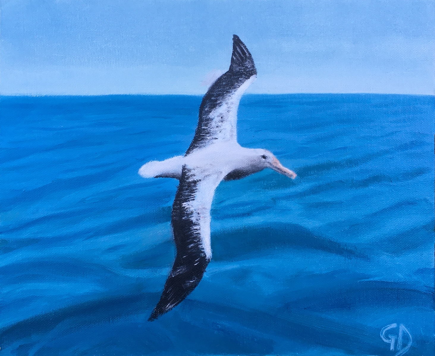 "Albatross.jpg - Albatross Water-soluble oil on canvas, 10 x 12"" (25.4 x 30.5 cm) Completed May 2020"