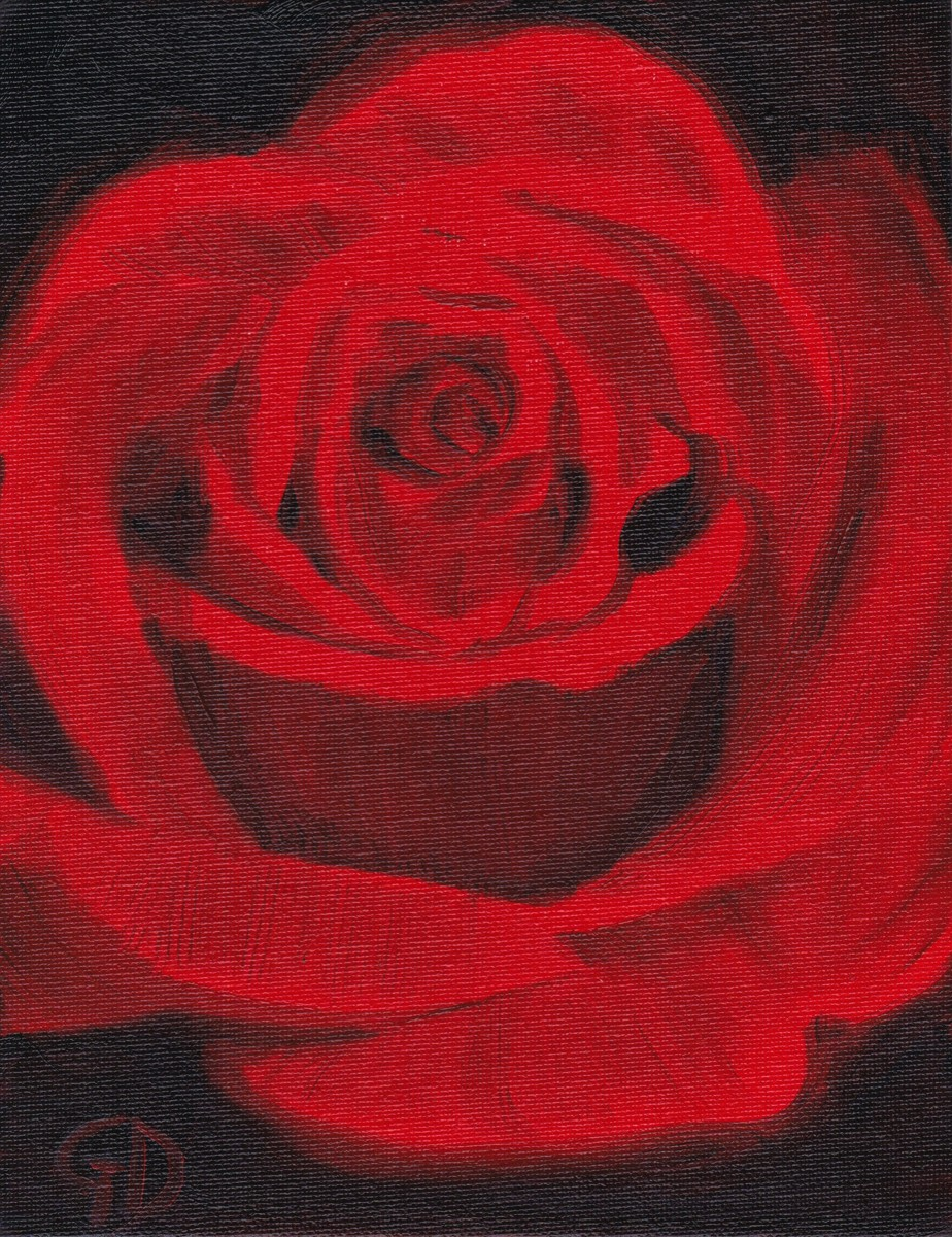 "Red Rose.jpg - Red Rose Oil on canvas - (7 x 9"") 178 x 229 mm Scanned 16 June 2014"
